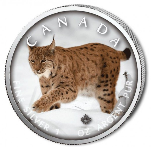 Silbermünze Kanada 2019, Serie Canada On the Trails of Wildlife, 8. Ausgabe Luchs
